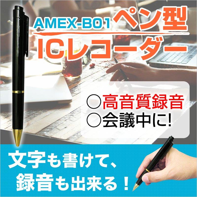 (1点)【ペン型ICレコーダー・リモコン付・4GBメモリ】※カメラは付いていません。<青木製作所 >