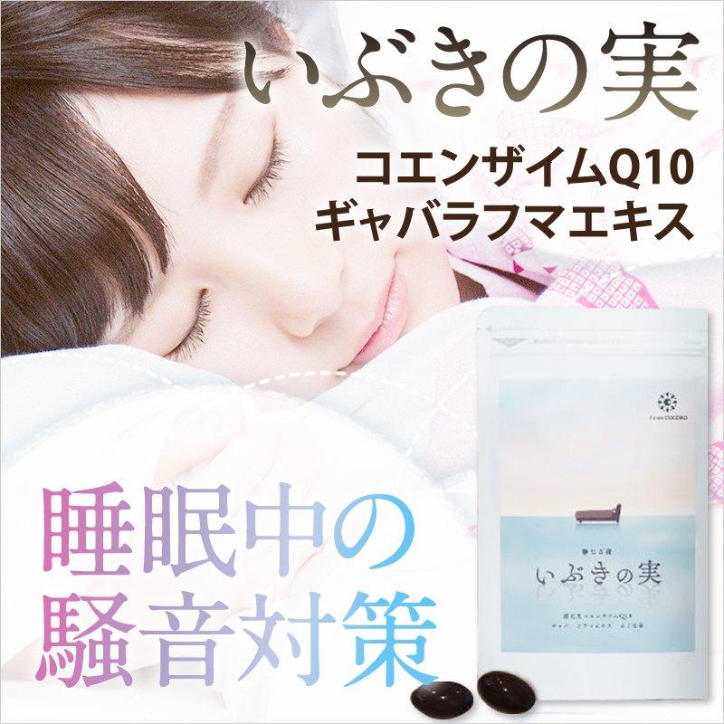 (1袋60粒入)【騒音ケア・コエンザイムQ10】<株式会社フロムココロ>