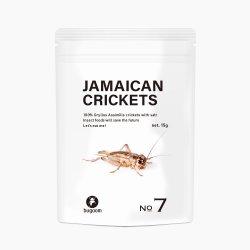 JAMAICAN CRICKETS【No.7】