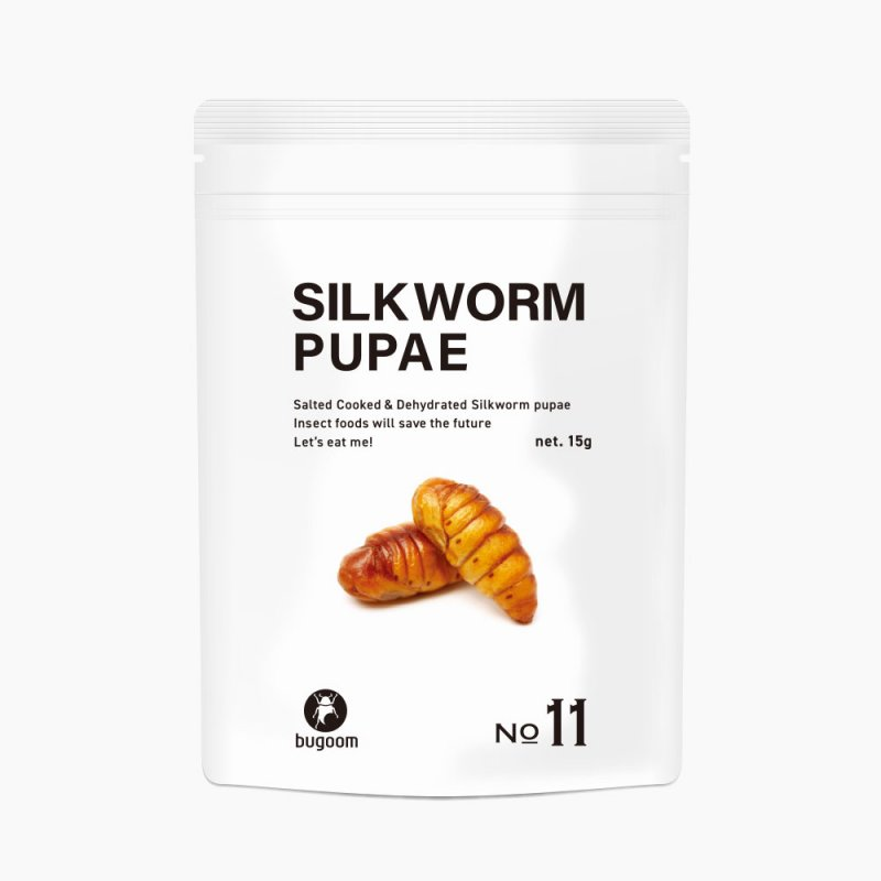 SILKWORM PUPAE【No.11】