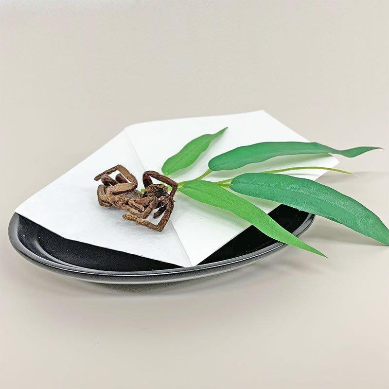 1袋(8g)【高値で取引されている、カンボジアの珍味!】<日本サプリメントフーズ株式会社>