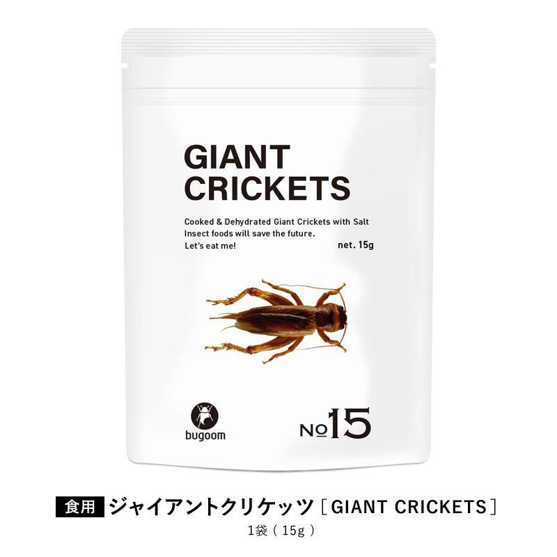 1袋(15g)【食べ応えも抜群!種の中でも、ひと際大きい!】<日本サプリメントフーズ株式会社>