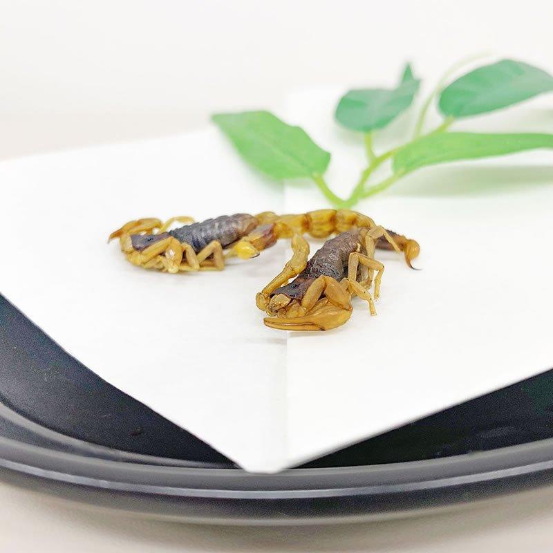 1袋(1.5g)【日本にも生息!小さくて食べやすい大きさ】<日本サプリメントフーズ株式会社>