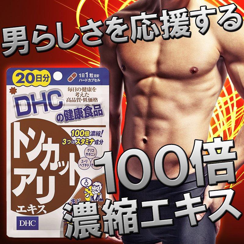 1袋(20粒入)約20日分【男らしいエネルギッシュな毎日を力強くサポート】<株式会社ディーエイチシー>
